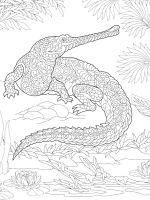 zentangle-crocodile-coloring-pages-8