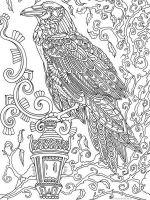 zentangle-crow-coloring-pages-4