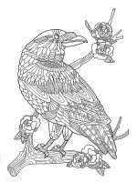 zentangle-crow-coloring-pages-5