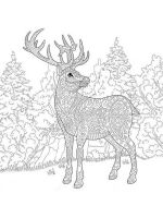 zentangle-deer-coloring-pages-4