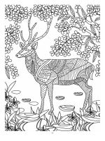 zentangle-deer-coloring-pages-5