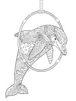 zentangle-dolphin-coloring-pages-7