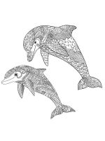 zentangle-dolphin-coloring-pages-8
