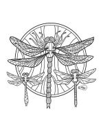 zentangle-dragonfly-coloring-pages-3