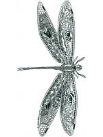 zentangle-dragonfly-coloring-pages-5
