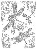 zentangle-dragonfly-coloring-pages-9