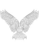 zentangle-eagle-coloring-pages-3