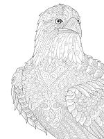 zentangle-eagle-coloring-pages-6