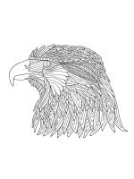 zentangle-eagle-coloring-pages-8