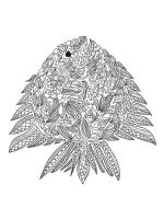 zentangle-fish-coloring-pages-18