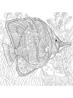 zentangle-fish-coloring-pages-24