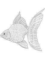 zentangle-fish-coloring-pages-28