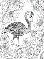 zentangle-flamingo-coloring-pages-2