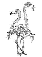 zentangle-flamingo-coloring-pages-5