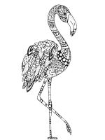zentangle-flamingo-coloring-pages-6