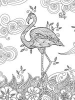 zentangle-flamingo-coloring-pages-9