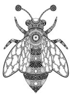 zentangle-fly-coloring-pages-1