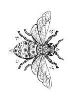 zentangle-fly-coloring-pages-3