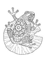 zentangle-frog-coloring-pages-11