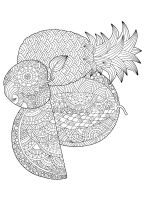 zentangle-fruit-coloring-pages-16