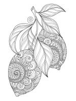 zentangle-fruit-coloring-pages-5