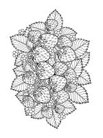 zentangle-fruit-coloring-pages-7