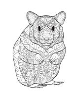 zentangle-hamster-coloring-pages-4