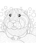 zentangle-hamster-coloring-pages-5