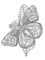 zentangle-insect-coloring-pages-1