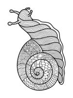 zentangle-insect-coloring-pages-20