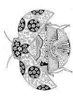 zentangle-insect-coloring-pages-28