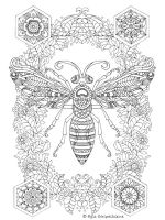 zentangle-insect-coloring-pages-29