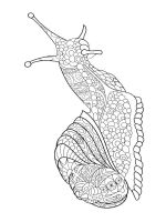 zentangle-insect-coloring-pages-31
