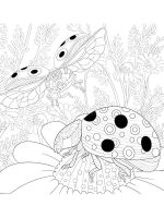 zentangle-insect-coloring-pages-32