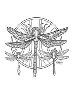 zentangle-insect-coloring-pages-6