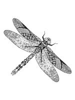 zentangle-insect-coloring-pages-8