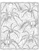 zentangle-insect-coloring-pages-9