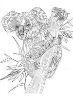 zentangle-koala-coloring-pages-6