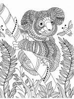 zentangle-koala-coloring-pages-8
