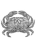 zentangle-krab-coloring-pages-2