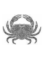 zentangle-krab-coloring-pages-5