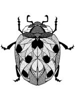 zentangle-ladybug-coloring-pages-3