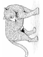 zentangle-leopard-coloring-pages-4