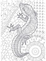 zentangle-lizard-coloring-pages-3