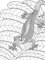 zentangle-lizard-coloring-pages-8