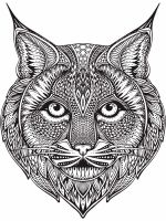 zentangle-lynx-coloring-pages-1