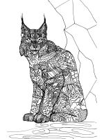 zentangle-lynx-coloring-pages-2