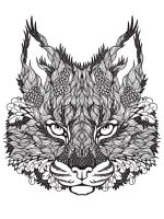 zentangle-lynx-coloring-pages-4