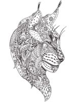 zentangle-lynx-coloring-pages-7
