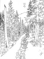 nature-coloring-pages-for-adults-17